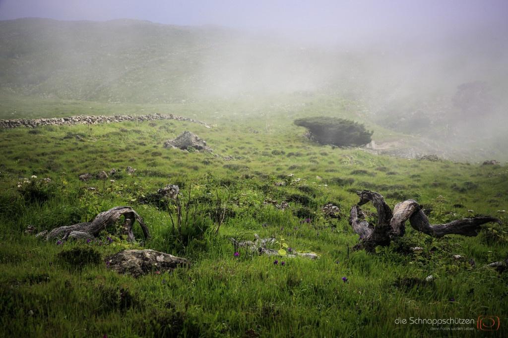 die Passatwolken steigen mit einem Mal hinter den Bergen auf und legen sich über die grüne Hochebene. Die Temperaturen fallen dann rapide ab, man braucht warme Jacken. | El Hierro