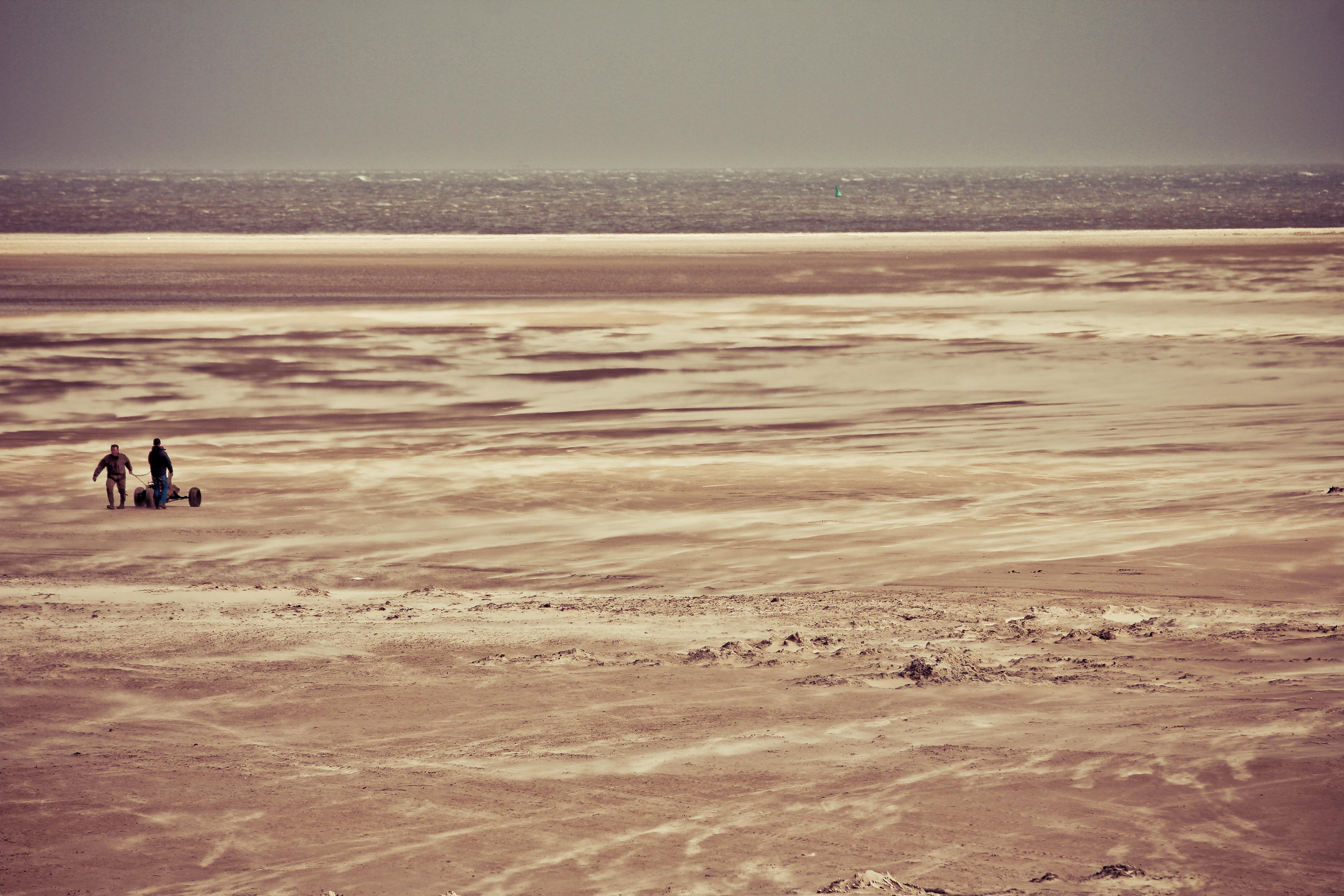 #Amrum Strand