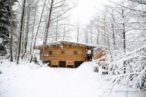 Hütte in den Vogesen