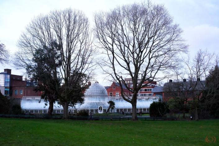 Botanischer Garten, Queens Quarter Belfast