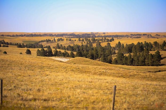 Oglala Grasslands
