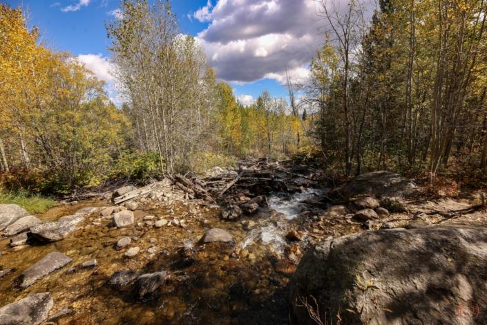 Rangertour zum Taggart Lake