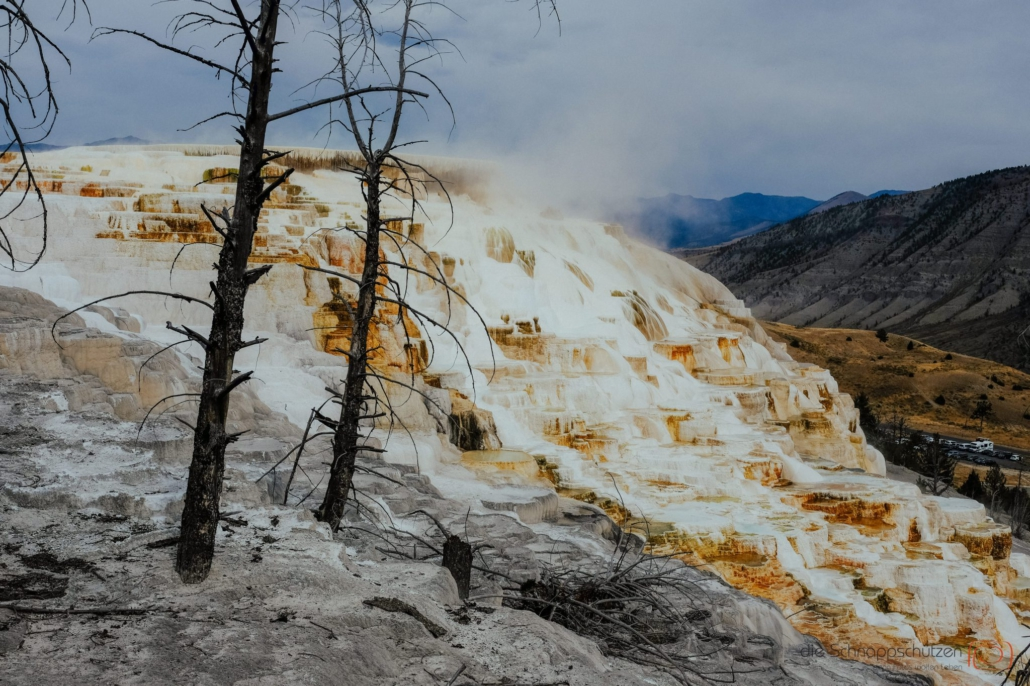 Sinterterrassen in den Mammoth Hot Springs